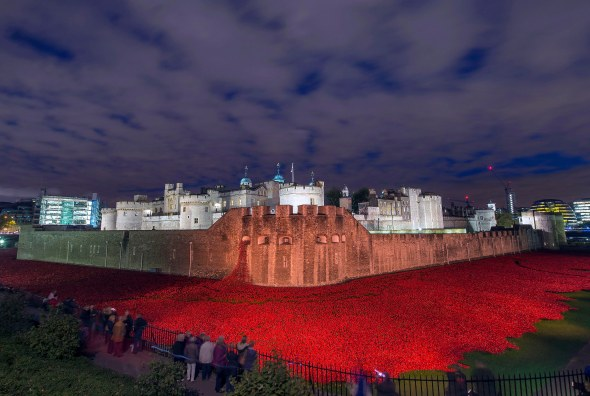 In England,  888,246 poppies were laid  to remember each of the WW1 dead.  (Photo courtesy of the Ministry of Defence.)