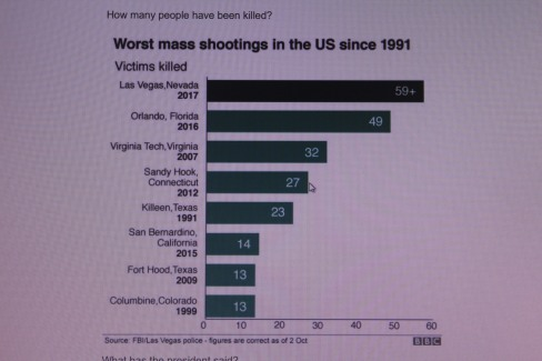 Attacks on people in USA
