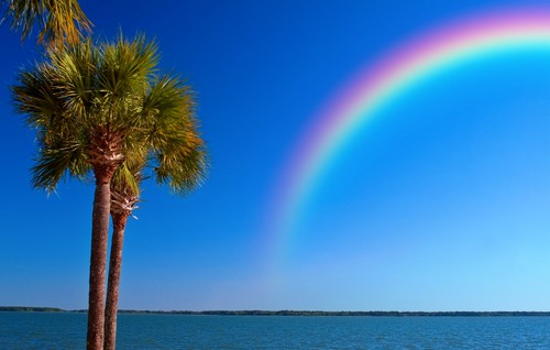 rainbow in Florida